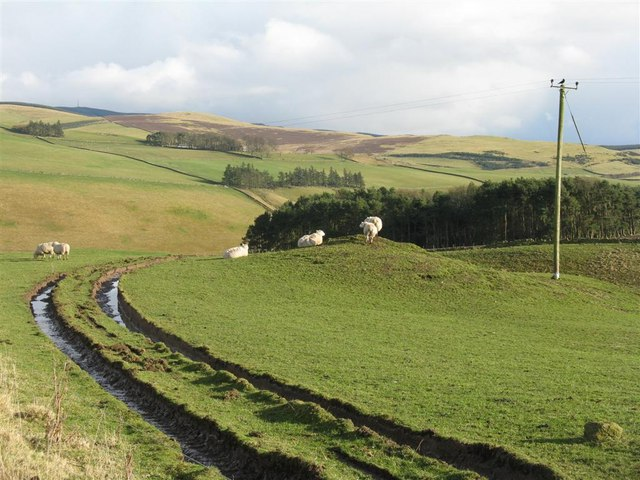 Farmland in the valley of the Eddleston Water