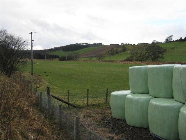 Fields at Milkieston