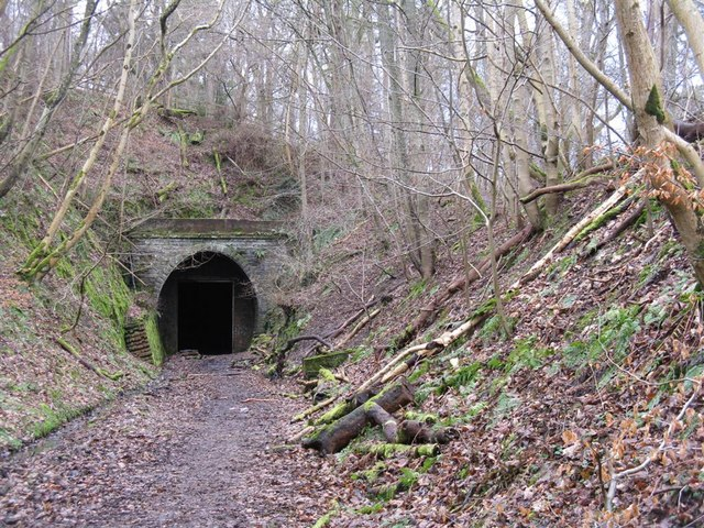 Eastern portal of the South Park Wood tunnel