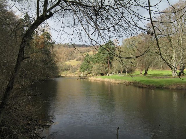 The River Tweed from South Park Wood