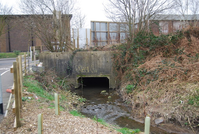 Unnamed stream emerging from a culvert, North Farm Estate
