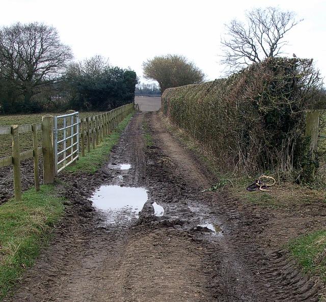 Ashotts Lane, Asheridge Farm - view SW