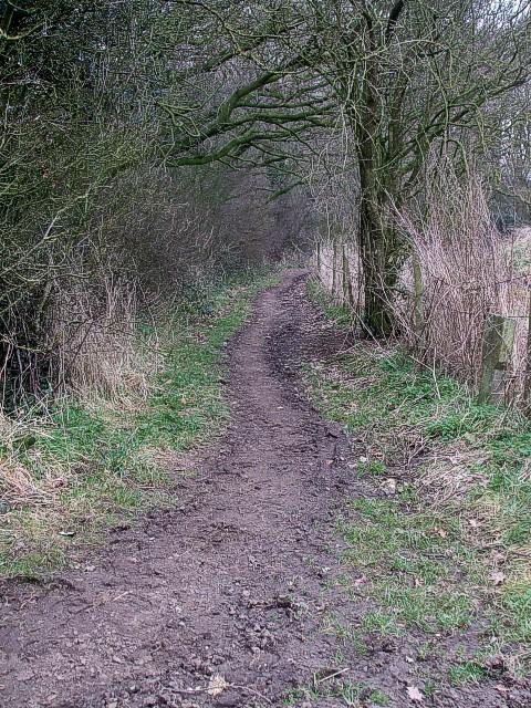 Ashotts Lane becomes narrower