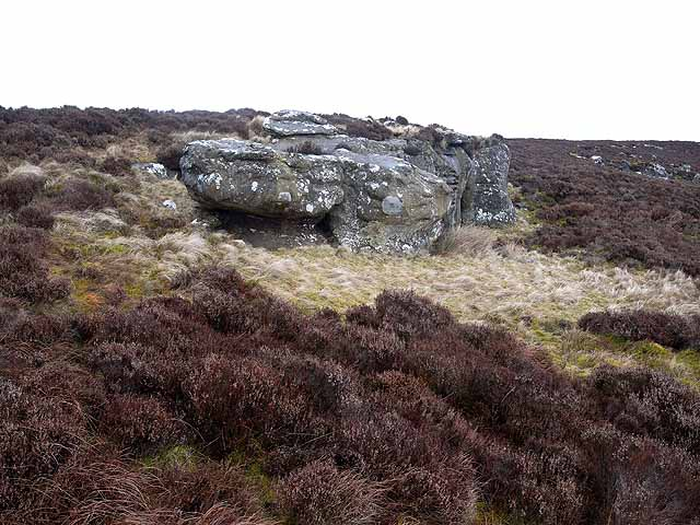 Rock outcrop on Long Crag