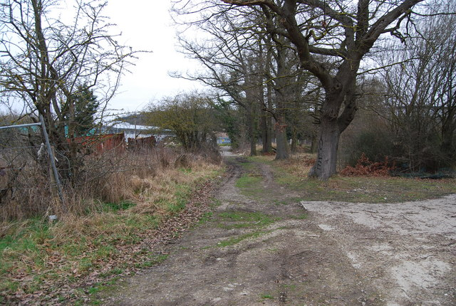 Footpath, North Farm Estate