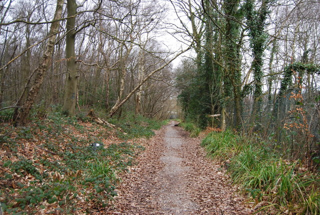 Home Farm Lane, North Farm Estate (2)