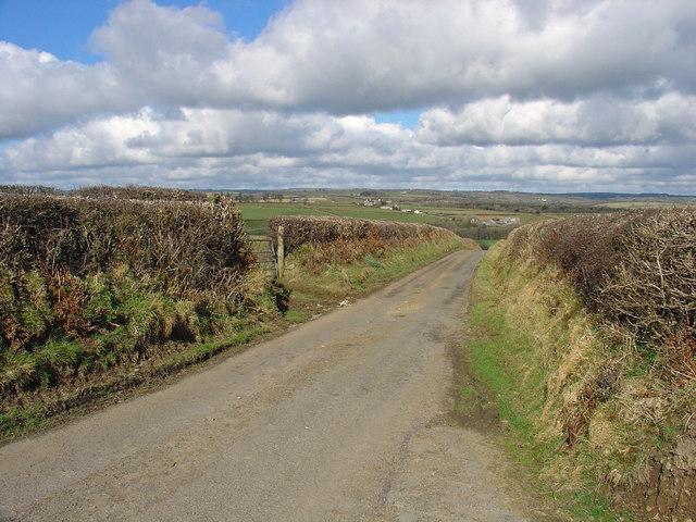 Lane near Blaen-bran, Aber-nant