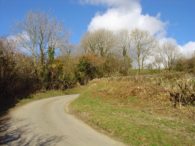 Hedge-row on the corner: Castell Dwyran, Aber-nant