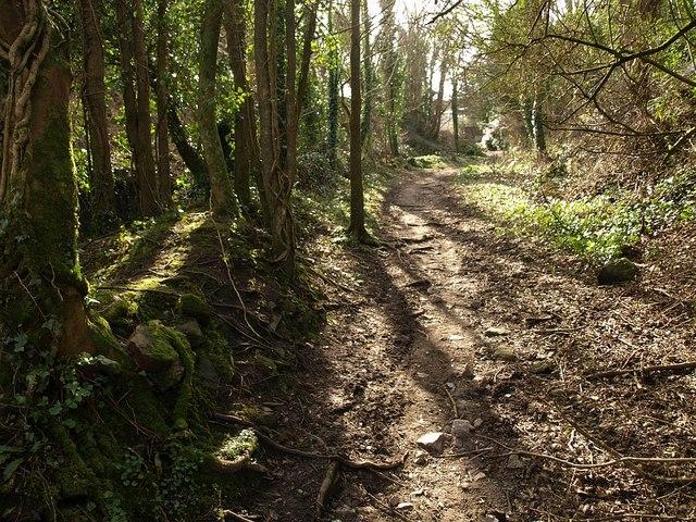 Path to Barncoose