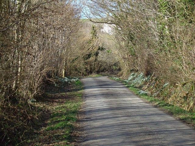 Lane to Cwmau, Carmarthen