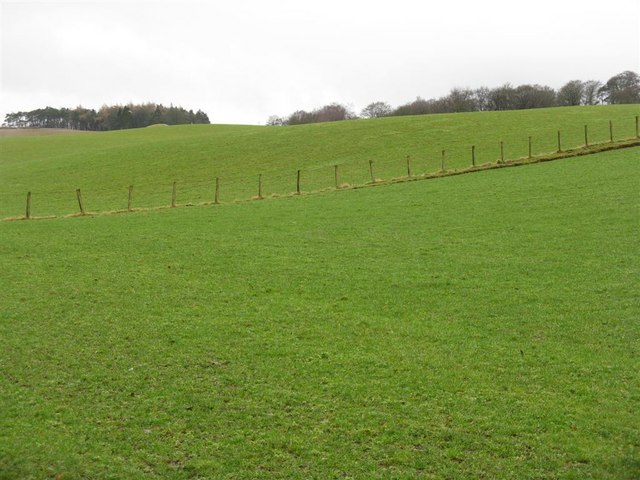 Green, green grass in the Black Barony