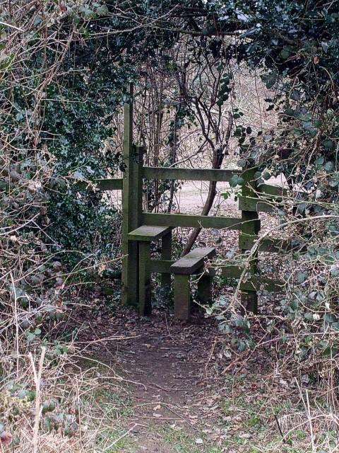 Stile in the hedge, Asheridge