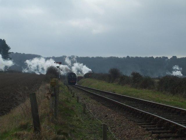 Steamy Norfolk landscape