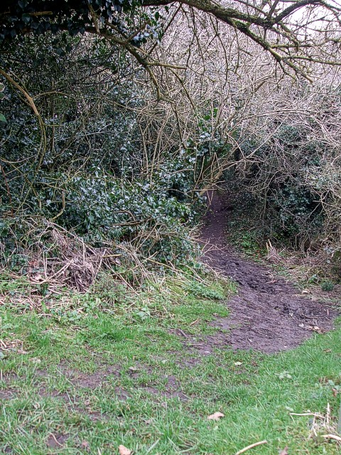 Chiltern Heritage Trail footpath