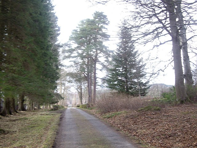 Driveway from Woodend House