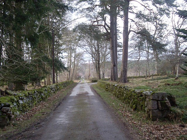 Junction of driveway from Woodend House with track to Woodend