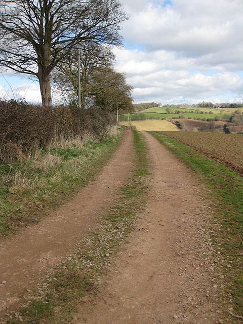 Farm track near Brockhampton