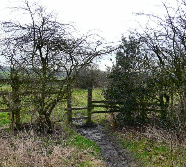 Footpath off Matley Lane