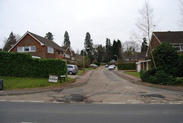 Rossdale, Ferndale