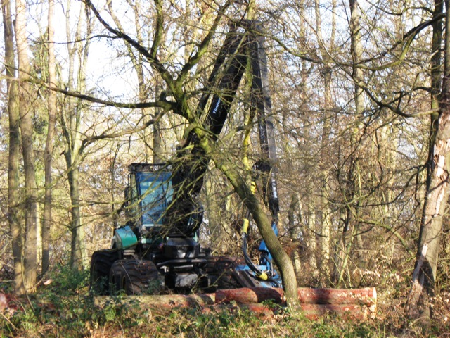 A Tree Felling Tractor at work in the Wendover Woods