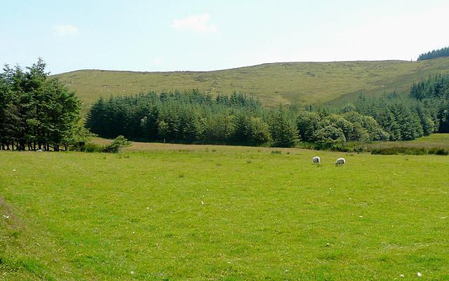 Grazing land and hillside, Esgair Fraith, Ceredigion
