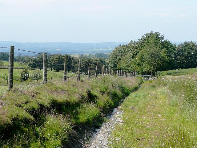 Bridleway by Bryn Du, near Tregaron, Ceredigion