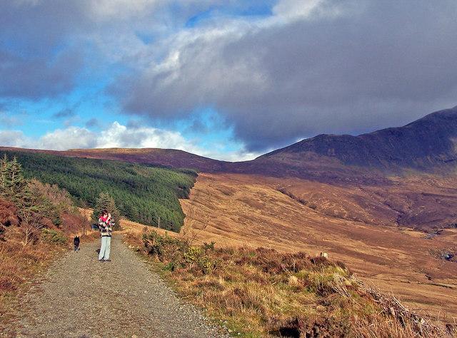 Forestry road, Glen Brittle