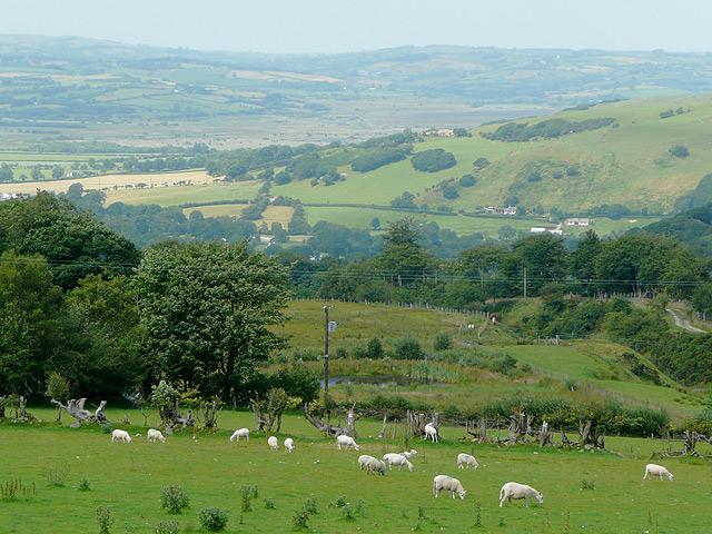 Landscape across the Teifi Valley, Ceredigion