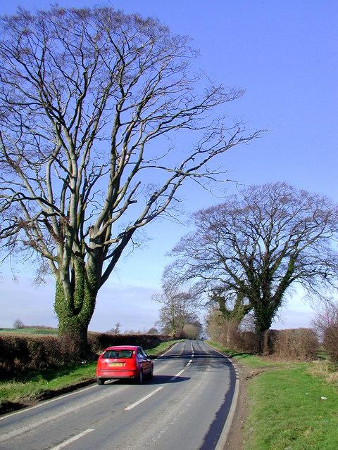 Riplingham Road
