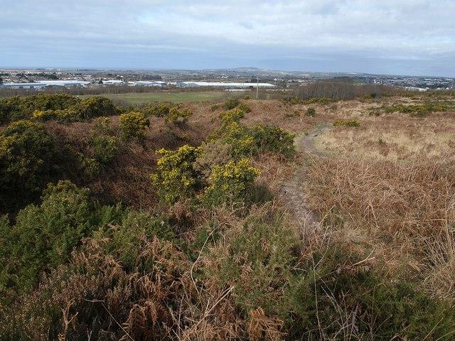 Heathland path below Carn Brea