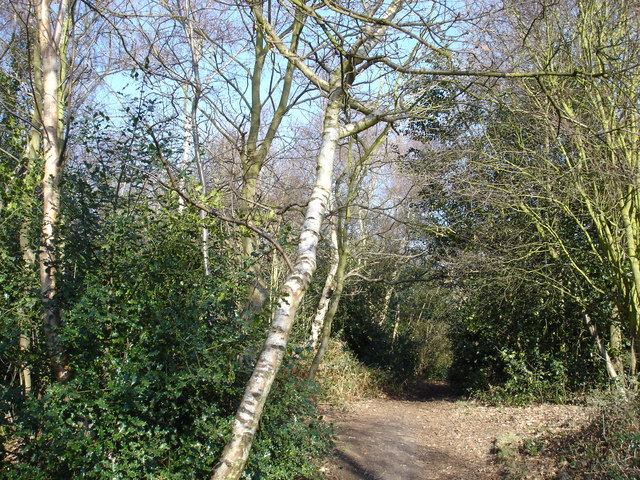 Footpath, Rushmere St. Andrew
