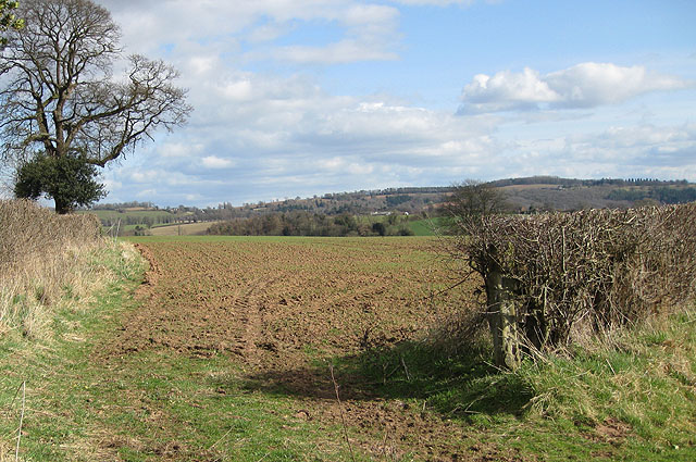 View to Perrystone Hill