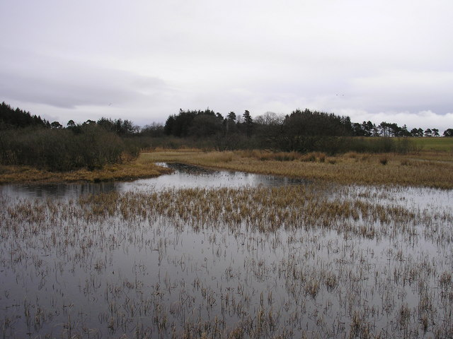 Nether Whitlaw Moss from the Boardwalk