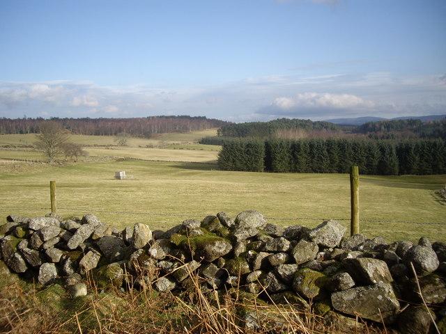 View towards Bog Loch