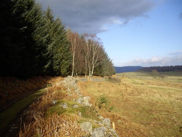 Track down Sluie Hill