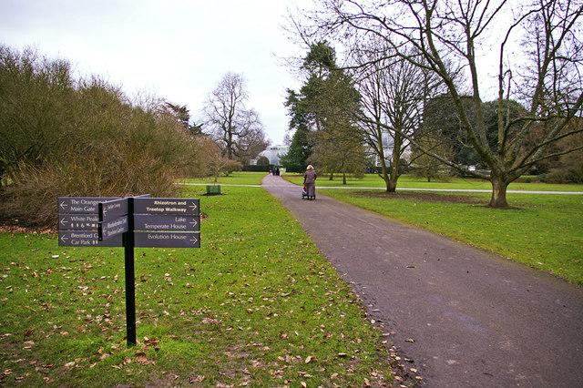 Pathway, Kew Gardens, Surrey