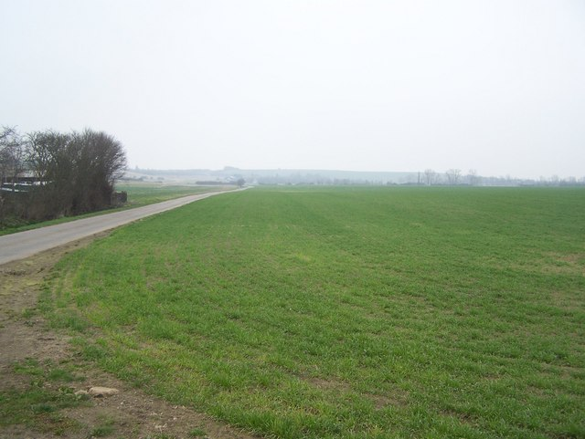 Lane and field in Groves Farm