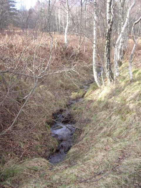 Upstream drain off Craiglash Hill
