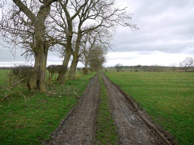 Footpath on farm track north of Low Hall