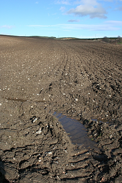 Ploughed Field near Goukstone