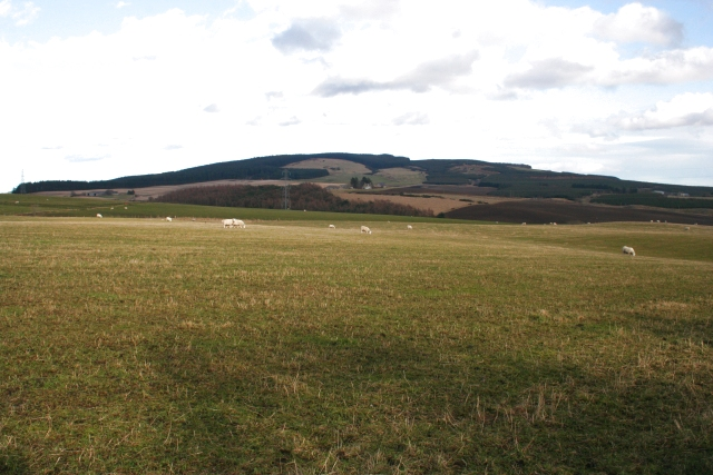 Looking towards Lurg Hill