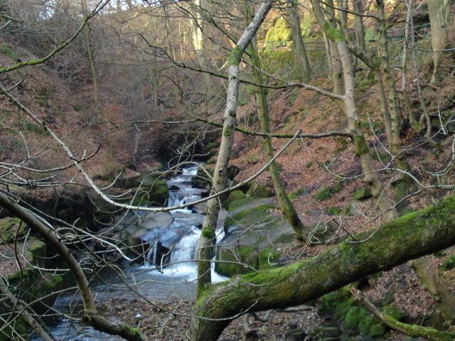 River Spodden in Healey Dell