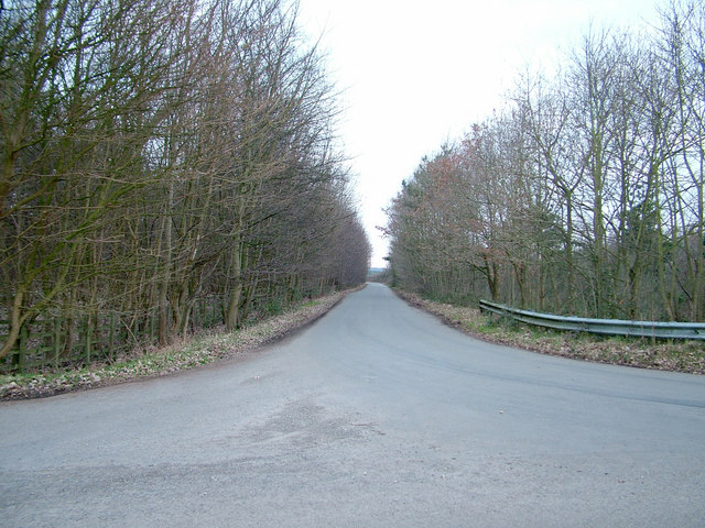 Very straight minor road, Pettistree
