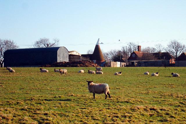 Coldharbour Farm, Plummer Lane, Tenterden, Kent