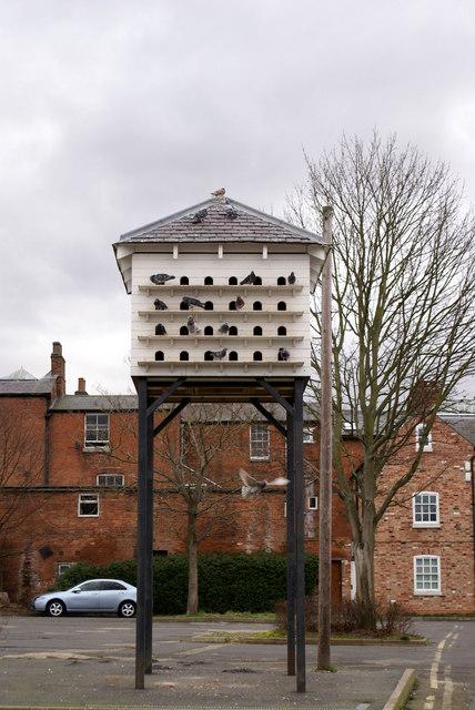 Pigeon hotel
