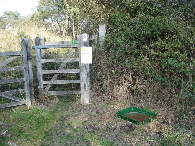 Lullington Heath - foot and mouth precautions
