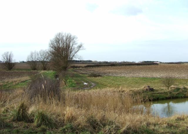 Farmland near Tollesbury
