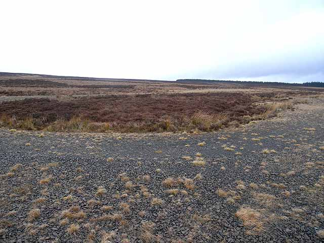 Military Training Area on Emblehope Moor