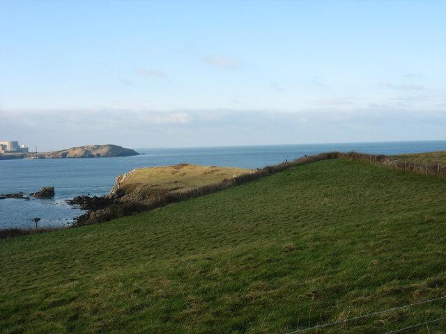 View across cliff top fields toward Trwyn y Buarth