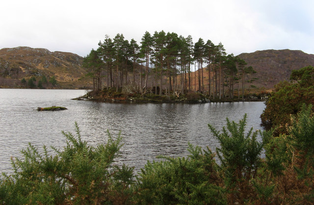 Island in Loch Druim Suardalain